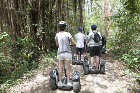 Jungle Segway